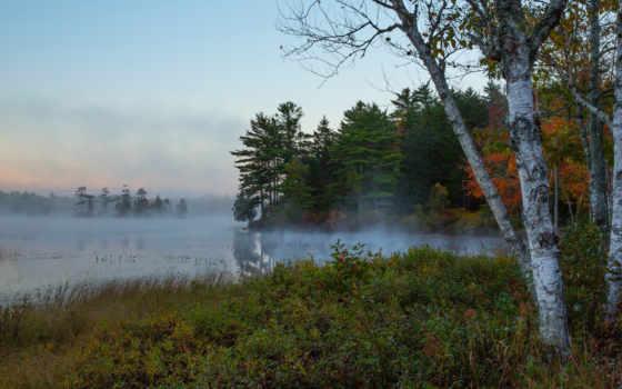 природа, dengi, утро, река,