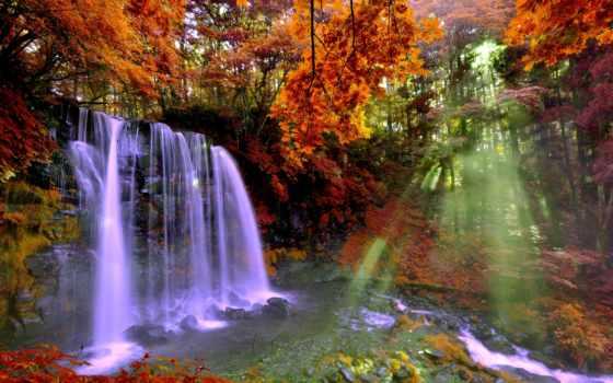 водопад, лес, осень