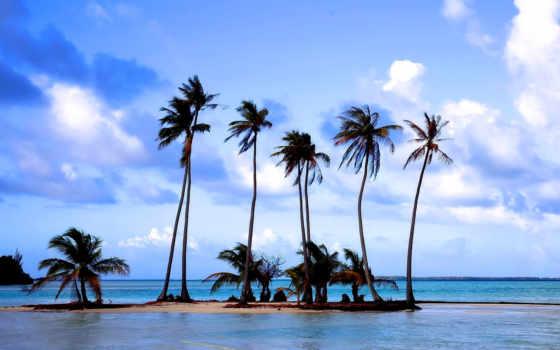 пляж, пальмы, море, песок, отдых, природа, остров, taha, tahaa, спа,