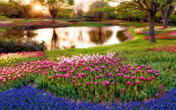 природа, весна, разделе