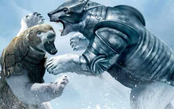 золотистый, compass, медведь, снег, борьба, фэнтези, приключения, медведи,