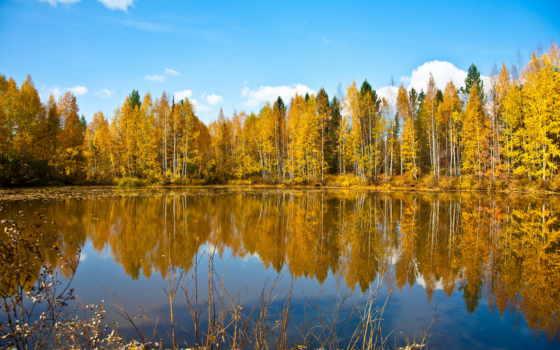 природа, осень, озеро, лес, небо,