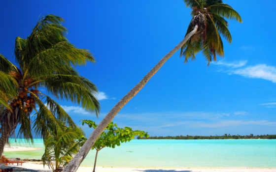 телефон, maldives, desktop, tropics, любой, компьютер, ноутбук, фон,