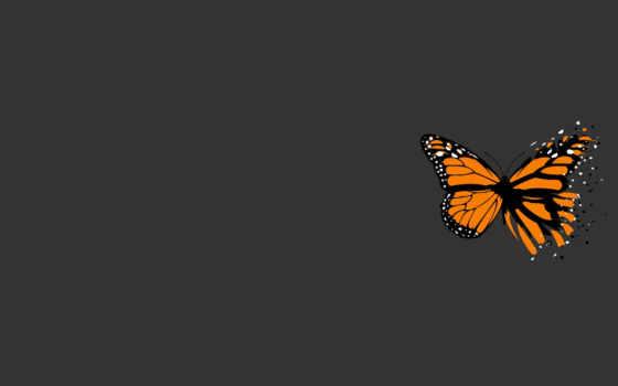 минимализм, бабочка