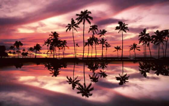 пляж, summer, bali, коллекция, drawing, природа, mac, ночь