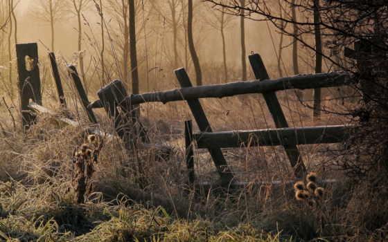 frost, забор