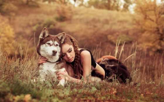 хаски, девушка, друзья, поле, собака, природа, назад, кнопкой, выберите, красивые,