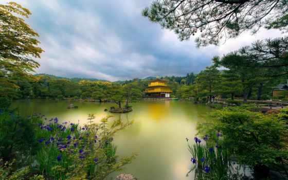япония, kyoto, золотистый, pavilion, храм, картинка,