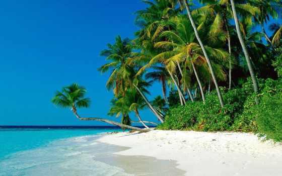 красивые, пляжи, самые, дек, пляж, рай, фотографий, земле,