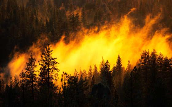 огонь, чернобыле, аэс, чернобыльской, грозит, zone, ли, радиоактивным,