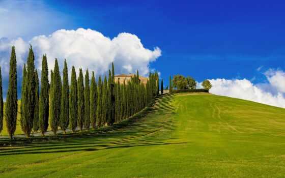 toskana, италия, kiparis, пейзаж, holm, ферма, печать, mit, dorogoi, дем, tuscany