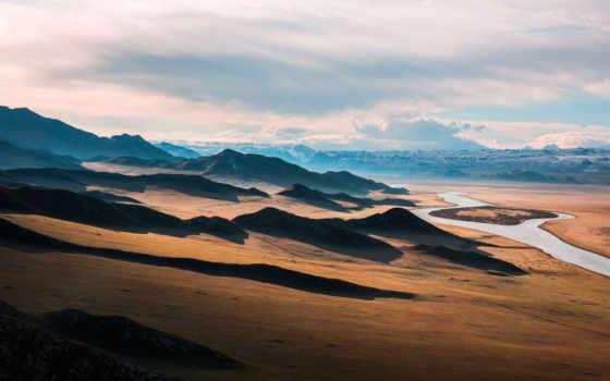 плакат, der, wüste, leben, zazzle, chf, bei, von, wüsten, designs,