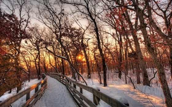 winter, снег, sun, trees, лес, закат, природа, красивые, alcatel,