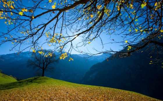осень, ранняя, картинка