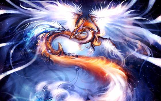дракон, fondos, pantalla, para, del, universo, dragones,