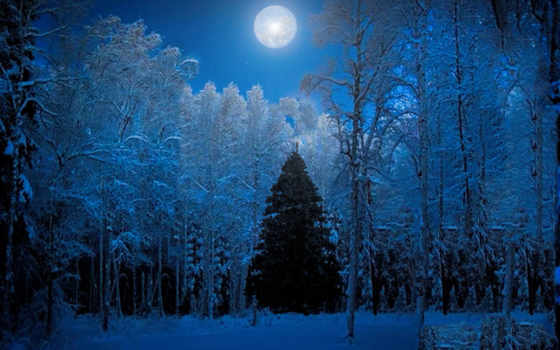christmas, pin, earth, pictures, free, pinterest,