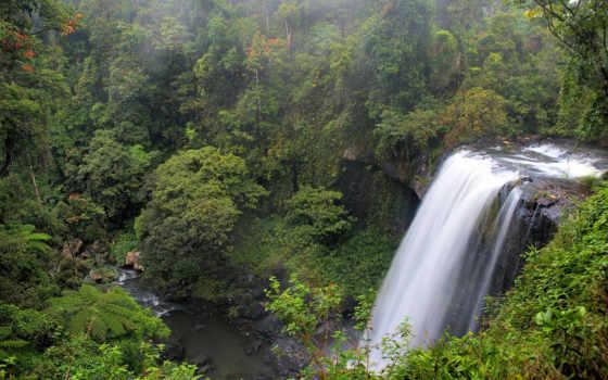 falls, австралия, водопад, природа, waterfalls, миллаа, water, поле, дерево, милла,