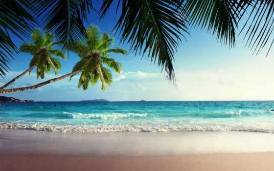 пляж, рай, посох, landscape, товар, aliexpress, схожие, море, english, new, дешевые,