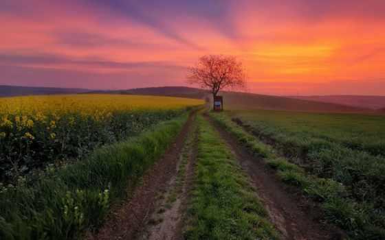 природа, республика, photos, чехия, страница, roads, поля, victoria, закат,