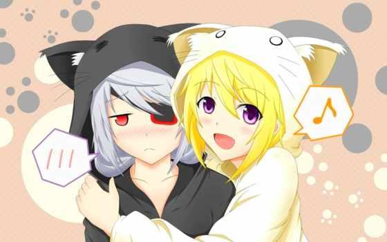 anime, кот, amino, масть, девушка, кошек, девушек, радость, грусть,