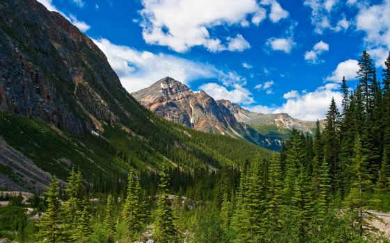 канада, jasper, лес, альберта, канадский, небо, suggestions, пейзажи -, favourite, город,