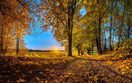landscape, осень, trees, пейзажи -, лес, дорога, закат, озеро, colorado, горы, склянки,