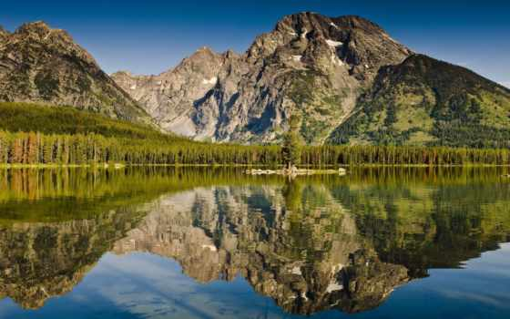 озеро, лес Фон № 22215 разрешение 2560x1600