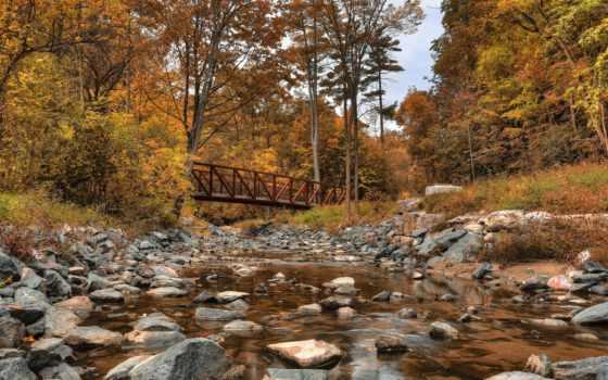 заводь, канада, wilket, деревья, природа, лес, park, скалы, парки, мост, река, мосты,