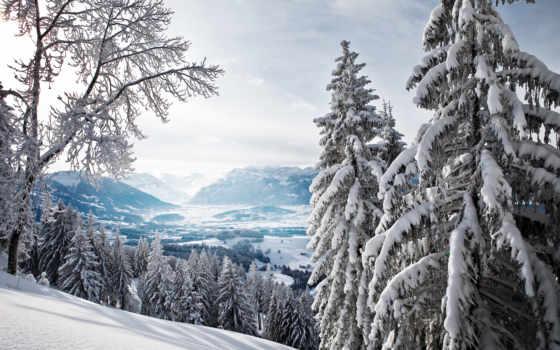 лес, winter, горы, eli, долина, природа,
