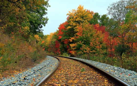 дорога, железная, осень,