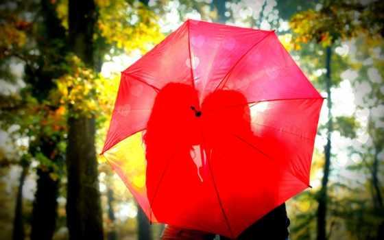 love, красивые, влюбленные, vapor, парень, бесплатные, об, девушка, только, природа, поцелуй,