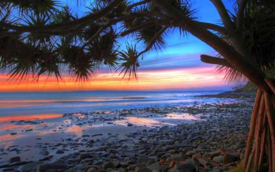 море, закат, palm, oblaka, камни, пальмы, дерево, небо, surf,