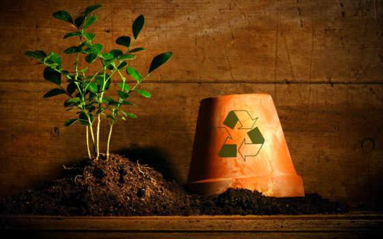 отходов, бытовых, тбо, waste, твердых, утилизация, обработка, бытовые, полигон, мусора, твердые,