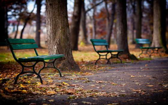 природа, landscape, осень, park, trees, скамейка,