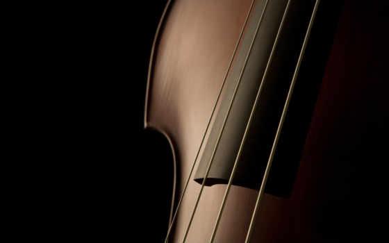 музыка, контрабас
