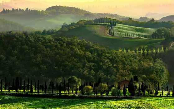 tuscany, hill, italy, утро, дерево, дорога, desktop, поле,