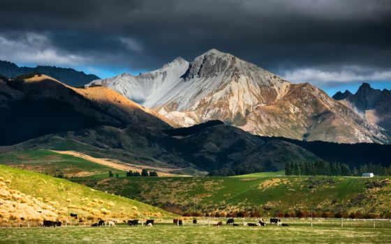 природа, качестве, хорошем, горы, new, новая, zealand, река, природы,