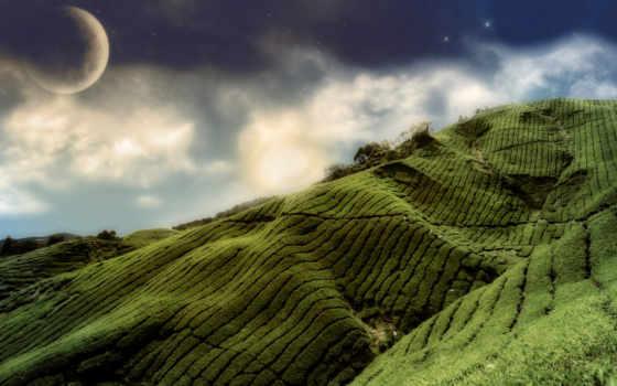 hills, зелёный, desktop,