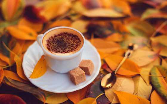 coffee, cup, блюдце, cvety, cappuccino, пенка, осенняя, латте, taniaum, pattern,