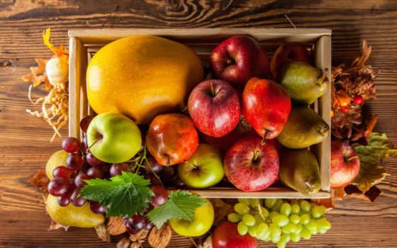 фрукты, производить, осень, фруктов, виноград, яблоки, тыква, урожай, фотографий,