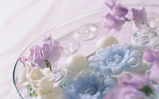 цветы, art, цветочек, shirokoformatnyi, лепесток, quill, интерьер