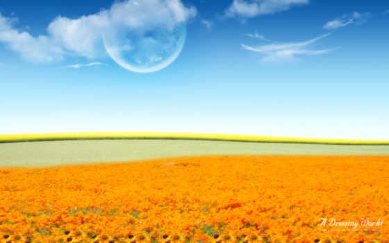 поле, цветочное, world, цветы, magical, графика, flowers,