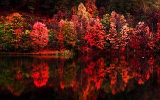 осени, краски, яркие, воде, отражение, природа, осень,