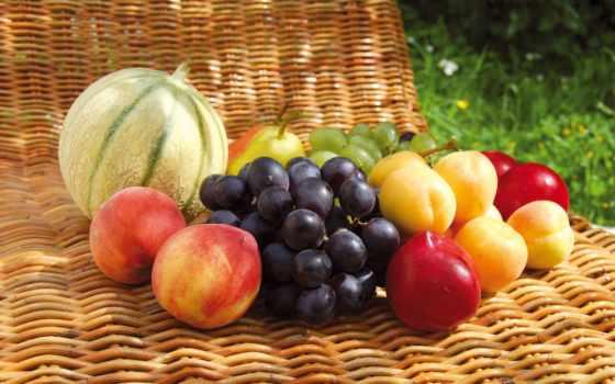 ассорти, fruits, légumes, производить, фрукты, статьи, великолепно, веганом,