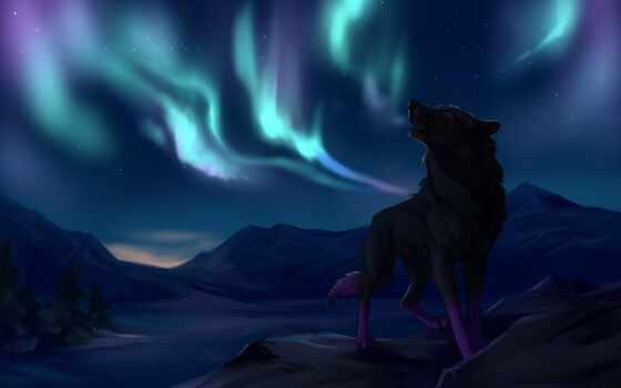 волк, гора, northern, animal, рисованный, сияние, звезды, trees