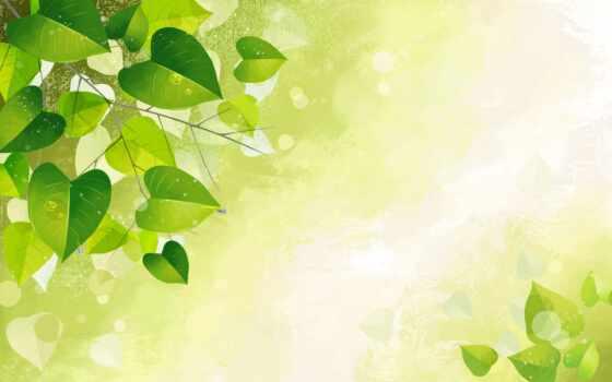 зелёный, mobile, фото, klaip-da, радуга, лицо, май, содержать