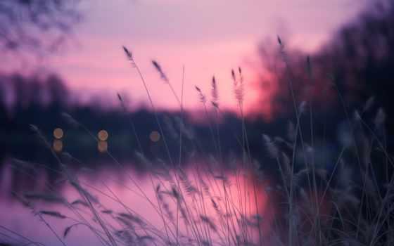 вечер, река