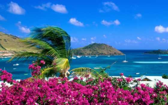побережье, морское, tropical