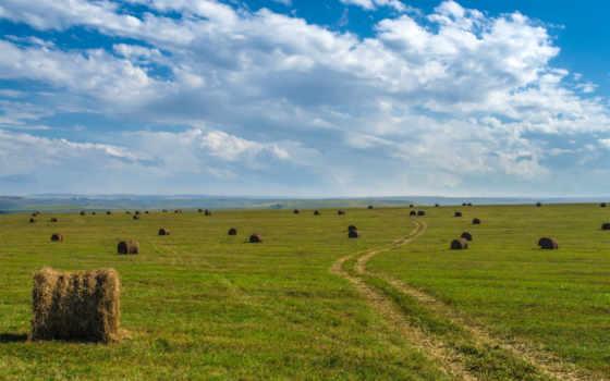 land, площадь, большой, плоский, природа, summer, картинка, thinglink, изображение, margin,