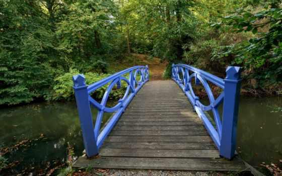 rzeka, листва, park